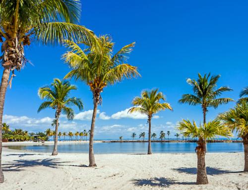 Psicóloga Terapia Breve Estratégica Miami y Online